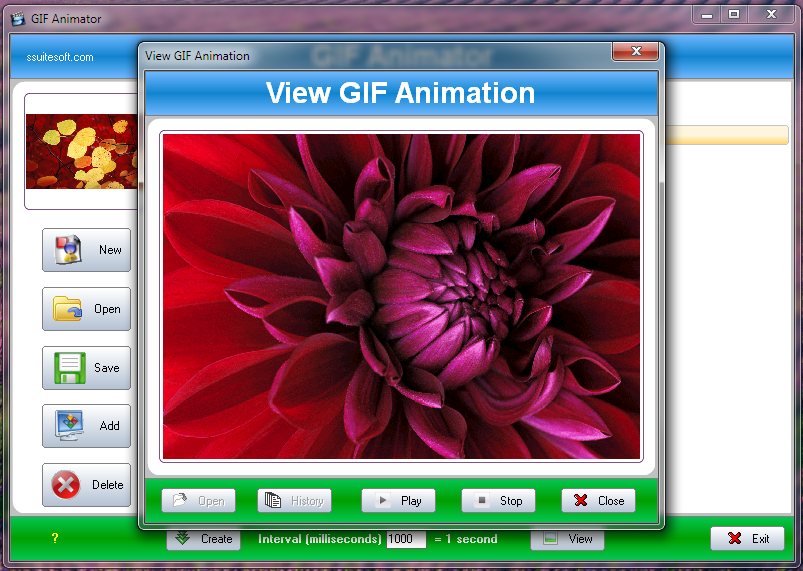 Gif Animator, Movie and Slide Show Creator - SSuite Office